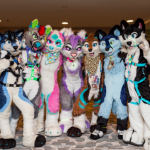 FuRrY gAnG picture