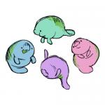 chubbymermaids