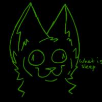Sparky-The-Catt