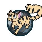 catpop2