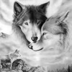 love-wolves