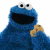 CookieMonster11