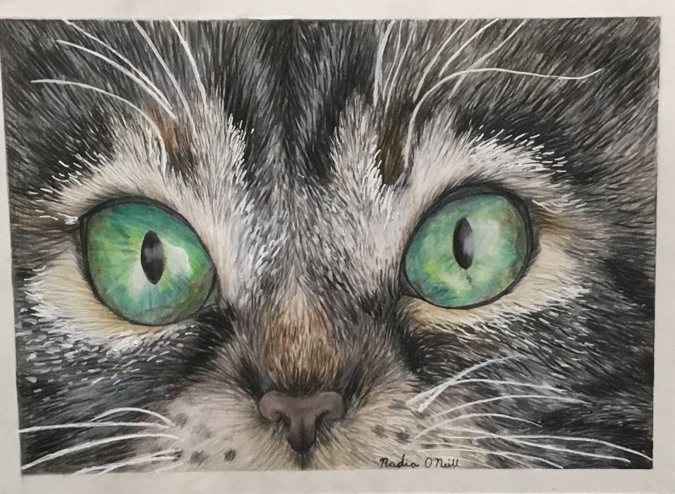 Cat Drawing by Nadia456
