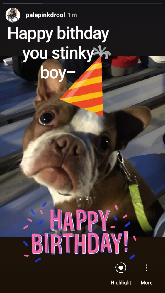 main-image-It be his barfday uploaded by mutt