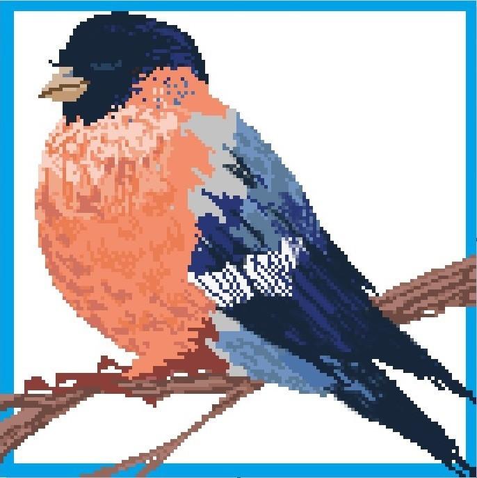 Lovely bird by Cheshinda