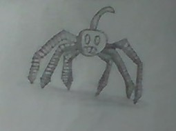 main-image-Cherry spider uploaded by Aubergines