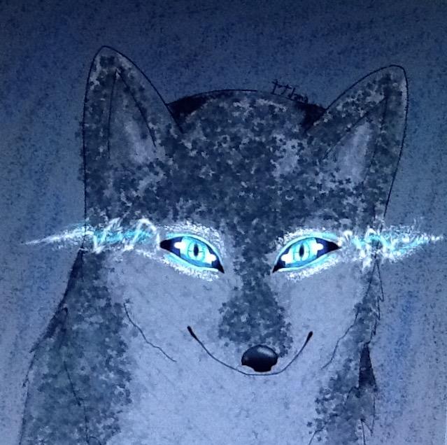 Wolf eyes by JanaFireBanana