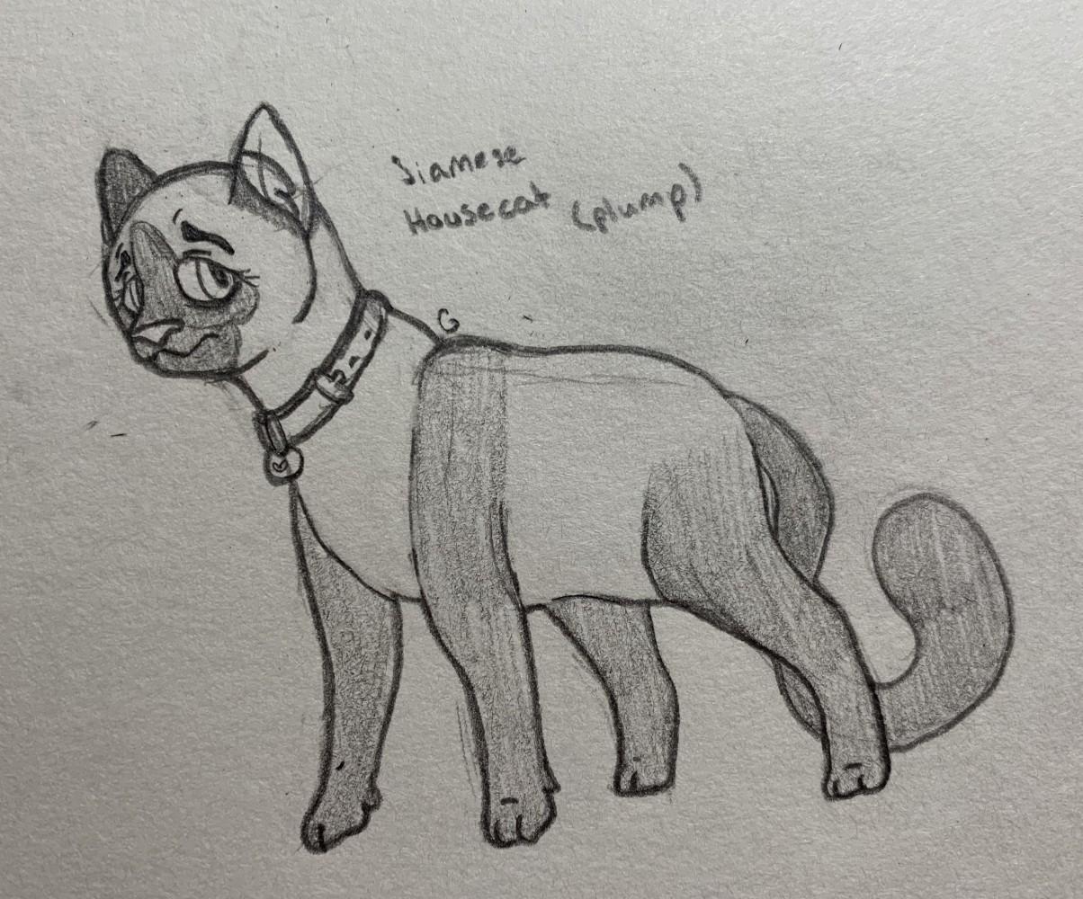 Cat by ThunderThighs