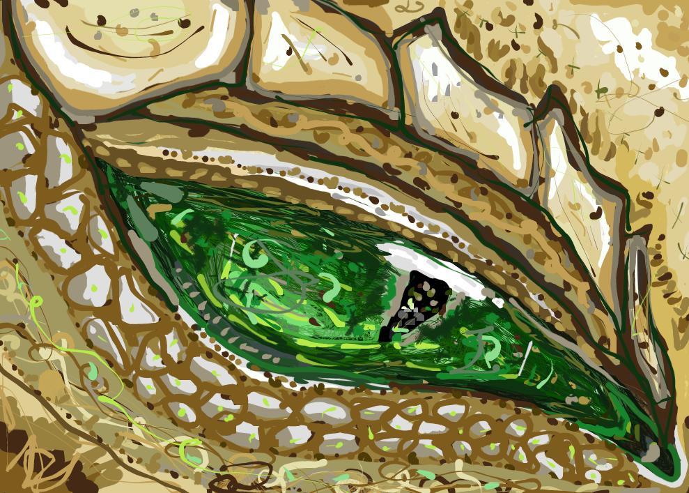 Zia's Eye by IlikeYoutube1