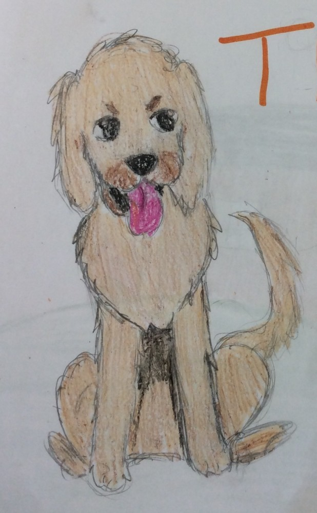 main-image-Puppy uploaded by flamerune