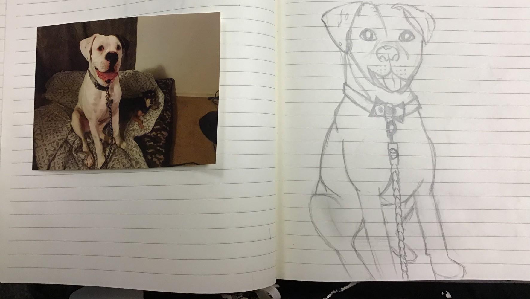 main-image-Opie the dog uploaded by Babykitten1613