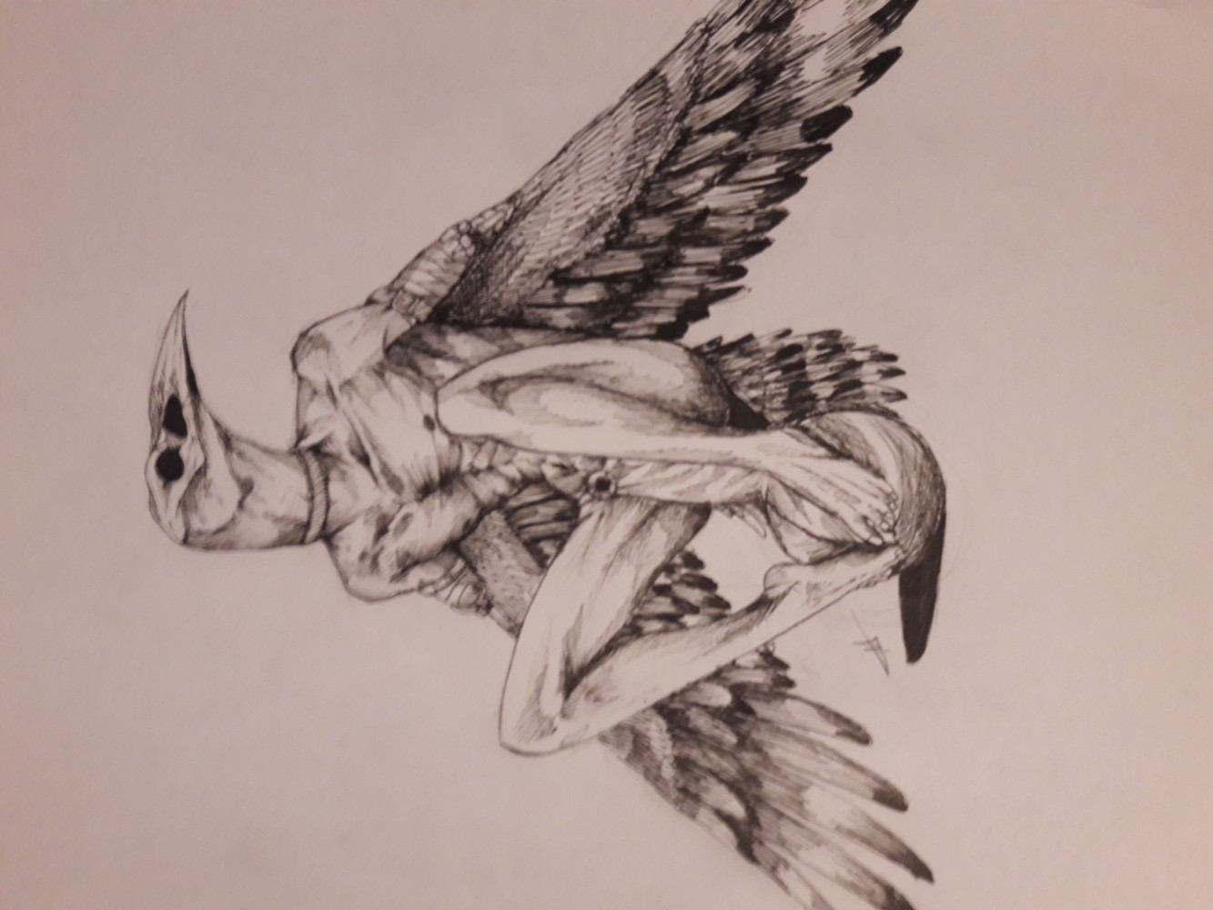 main-image-Bird thing uploaded by MikaeART