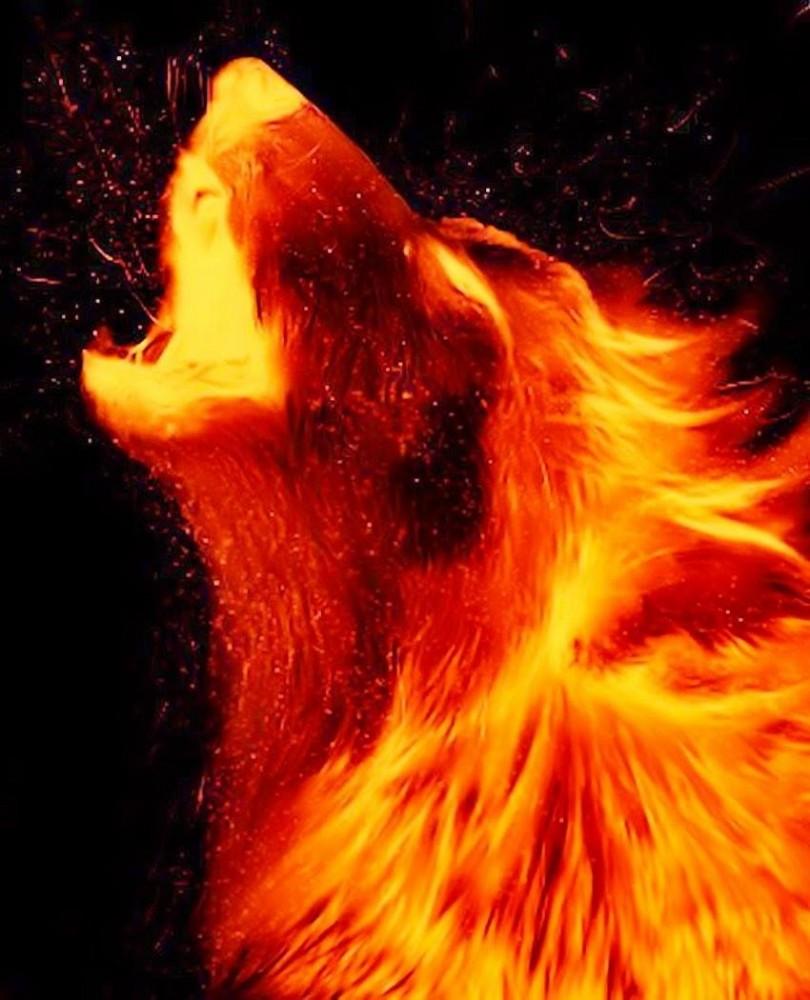 main-image-Flame uploaded by Black-Alpha-123